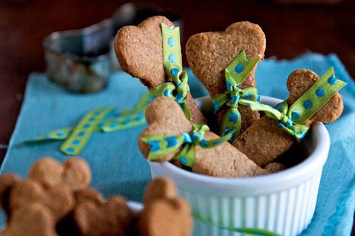 biscoitos saudáveis para cachorros