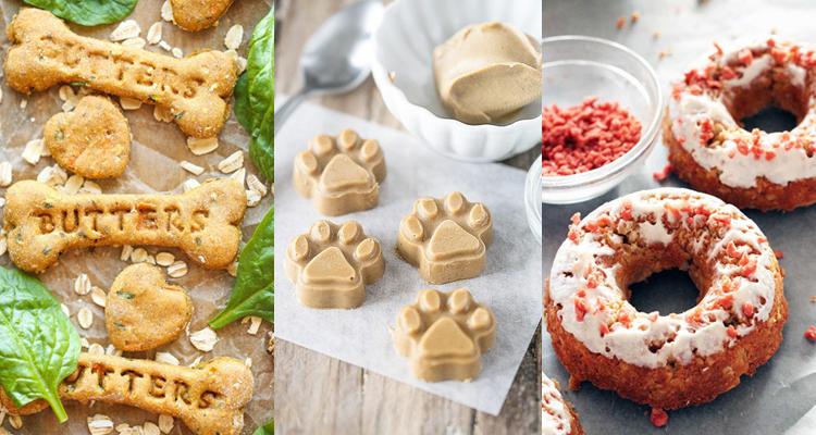 como fazer biscoitos para cachorro