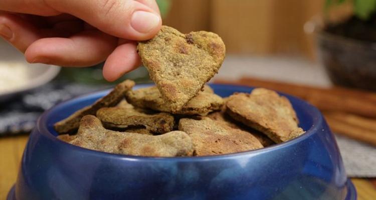 curso biscoitos saudaveis para cachorros